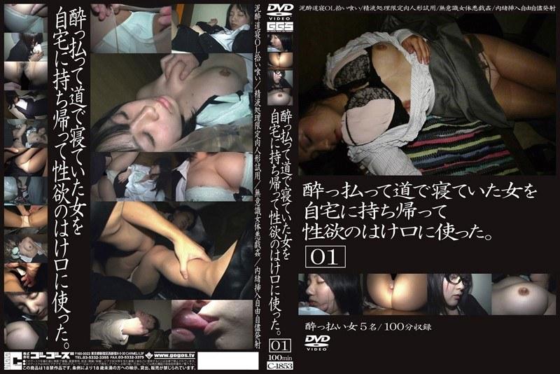 酔っ払って道で寝ていた女を自宅に持ち帰って性欲のはけ口に使った。01