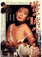 今陽子、城源寺くるみ 成人映画、成人映画、ドラマ、サンプル動画 蕾の眺め