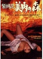高原香都子、青木祐子 成人映画、ドラマ、お嬢様・令嬢、成人映画 緊縛花・美肉の森