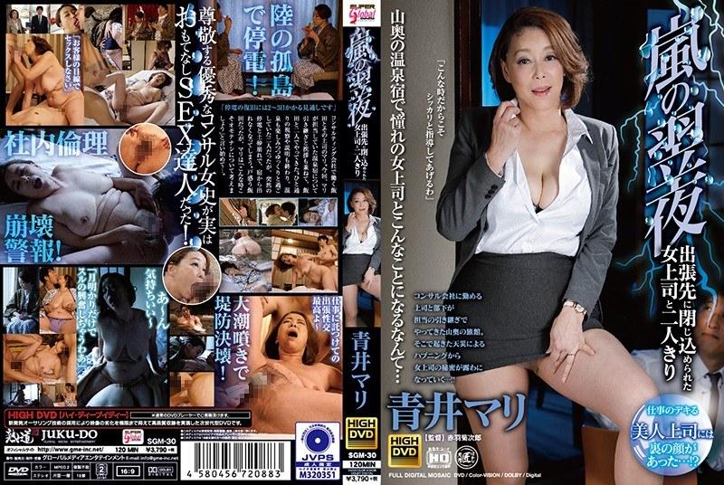 嵐の翌夜、出張先に閉じ込められた女上司と二人きり 青井マリ