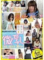 美少女限定 微乳 THE BEST 30 2nd ダウンロード