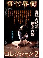 雪村春樹コレクション2 柔肌の玩具・飼育の館 西沢加奈 ダウンロード