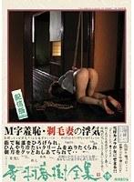 雪村春樹全集 15 桜沢まひる