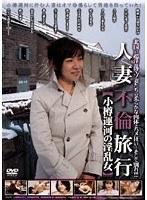 人妻不倫旅行 小樽運河の淫乱女 ダウンロード