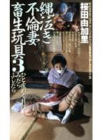 縄泣き不倫妻畜生玩具3 桜田由加里 ダウンロード