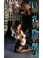 巨乳陰獣 3 神谷麗子 ダウンロード