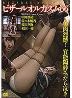 ビザールオルガズム 66 ダウンロード