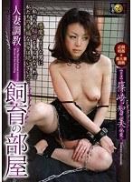 人妻調教 飼育の部屋 篠崎智美