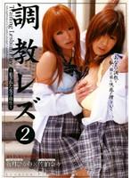 調教レズ 2 〜犯された女子校生〜 蒼月ひかり×佐伯奈々 ダウンロード