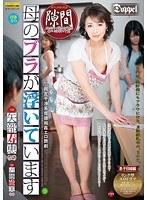 母のブラが浮いています 矢部寿恵 近藤郁美