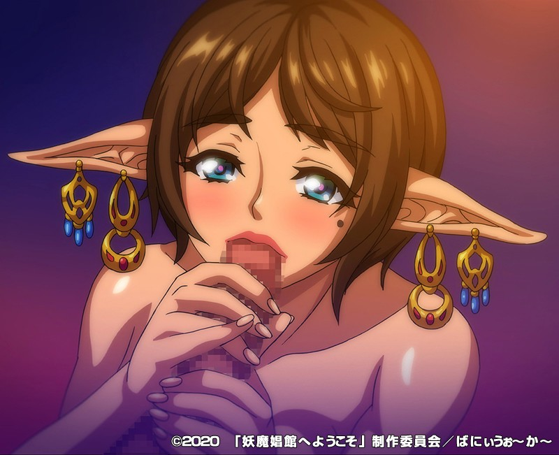OVA妖魔娼館へようこそ#1 画像11