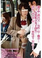 通学中の満員バスでしか男性と接する機会がないウブな有名私立女子○校生は勃起したチ○ポを押しつけられたら興味津々で握り返してきた ダウンロード