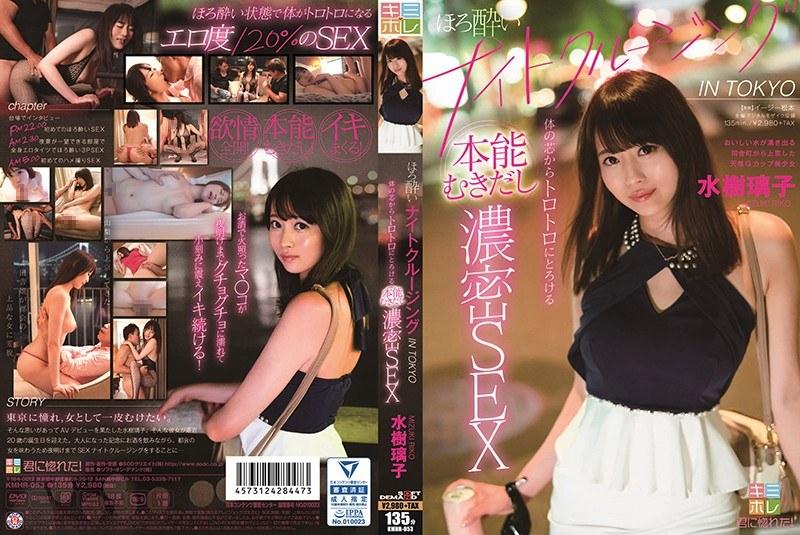 ほろ酔いナイトクルージング IN TOKYO 体の芯からトロトロにとろける本能むきだし濃密SEX 水樹璃子