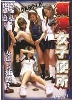 痴漢女子便所 VOL.11 ダウンロード