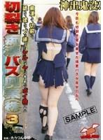 切裂き痴漢バス興業(株) 3 ダウンロード
