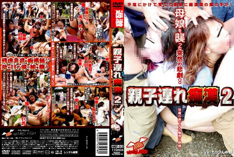 NHDT-513 親子連れ痴漢 2