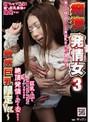 痴漢発情女 3 ~敏感巨乳限定Ver.~