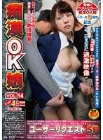 痴漢OK娘 VOL.14 ユーザーリクエストSP ダウンロード