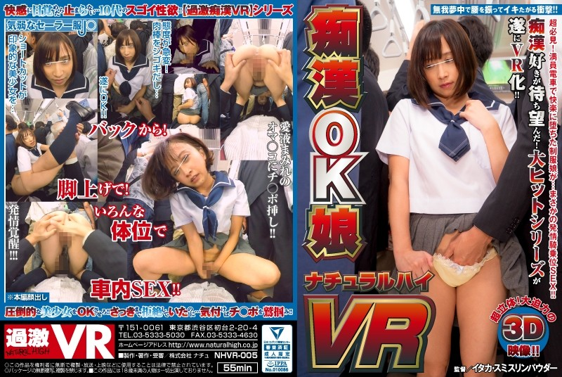 【VR】痴漢OK娘 VR