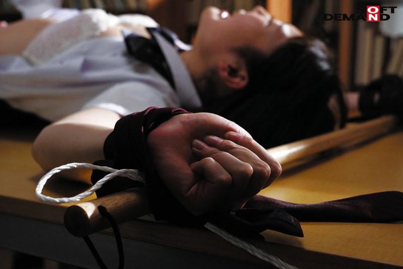 誰にもバレないように、学校で人体固定・監禁調教していた夏休み。 武田エレナ 2枚目