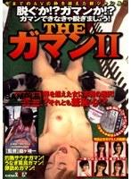 THE ガマン 2