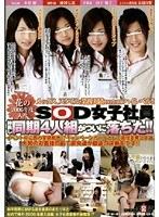 花の2006年度入社 SOD女子社員 仲良し同期4人組がついに落ちた!! ダウンロード
