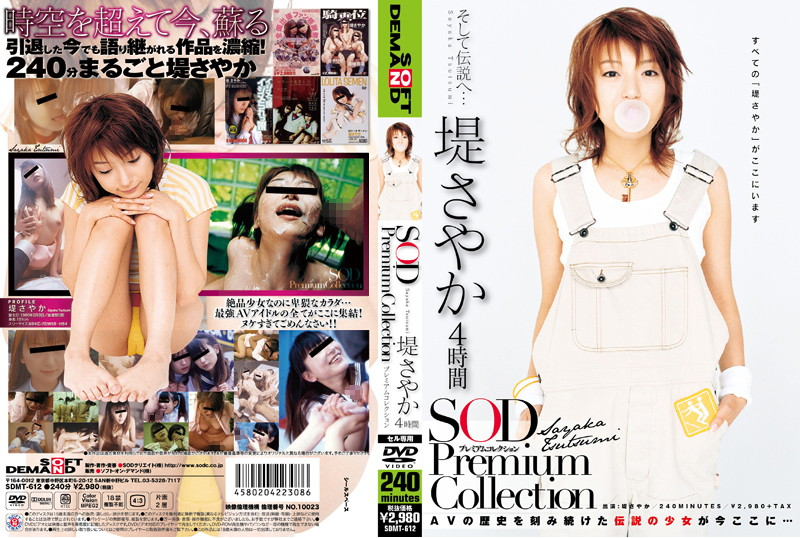 堤さやか 4時間 SOD Premium Collection
