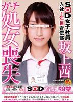 SOD女子社員入社1年目宣伝部坂上茜 ガチ処女喪失 SOD看板娘 vol.3 ダウンロード