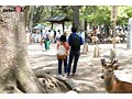 (1sdmu00952)[SDMU-952] 奈良で捕まえた超絶オドオドビクビクデカちち子ちゃん ガチガチ巨根突っ込まれて半べそAVでびゅう。(させました。) 奈良県柏木町在住 「柏木むぅ」ちゃん ダウンロード 1