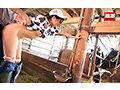 接客中に顔を紅潮させながら感じまくるバイト娘 牧場の桃尻飼育員 No.9