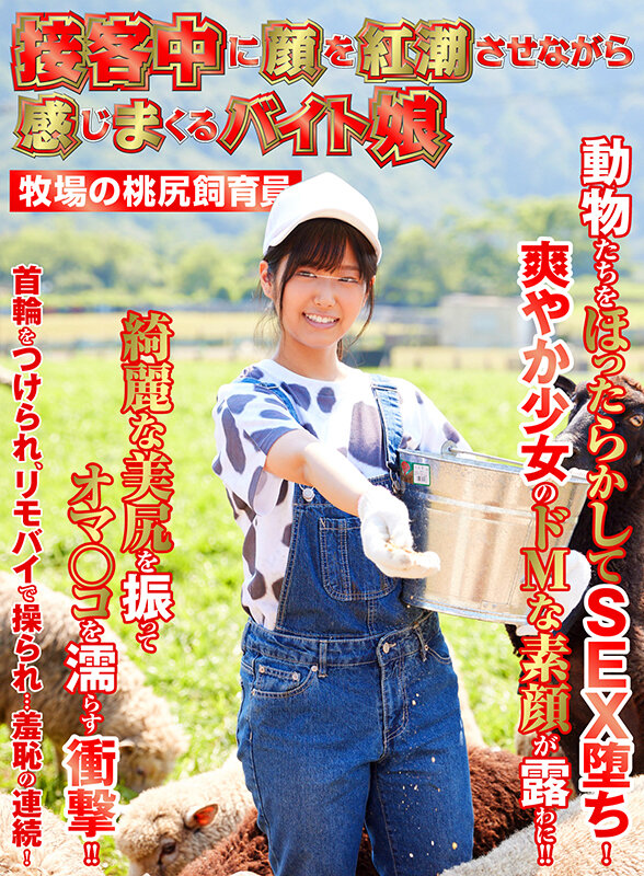 (1shh00027)[SHH-027]Full Service Blushing Sluts: A Ranch Keeper With A Round, Peachy Ass Download sample_big