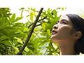 【圧倒的4K映像でヌク!】ようこそ癒しの楽園へ。南国エロテ...sample20