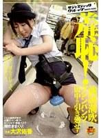 羞恥!強制潮吹きマシンパンツで街中を引き廻せ! 大沢佑香 ダウンロード