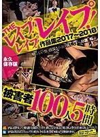THEレイプ!レイプ!レイプ!作品集2017〜2018被害者100人5時間永久保存版