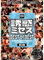 誘惑ミセス BEST of BEST 第3巻 ダウンロード