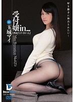 VDD-102 受付嬢in… [脅迫スイートルーム] 玉城マイ