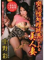突然、性処理玩具とされる美人妻 中野彩 ダウンロード