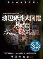 渡辺琢斗大図鑑 8時間 Premium Best 2 ダウンロード