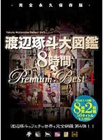 優木明日花 渡辺琢斗大図鑑 8時間 Premium Best 4