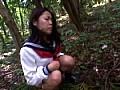 (33yvs002)[YVS-002] 制服少女 野糞調教 ダウンロード 3
