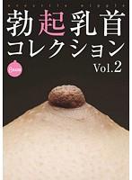 勃起乳首コレクション VOL.2 ダウンロード