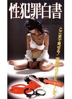 性犯罪白書 1