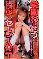 学園わいせつセーラー・ハニー2【宝生奈々】