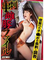 串刺しされた雌豚ファイル VOL.13 ダウンロード