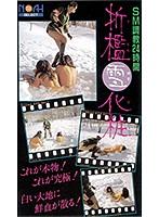 折● 雪化粧 ダウンロード