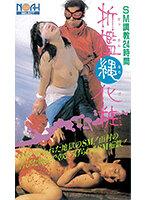 (42as00125)[AS-125]折● 縄化粧 ダウンロード