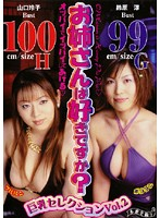 お姉さんは好きですか? 巨乳セレクション Vol.2 ダウンロード
