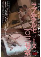 長野県塩尻市国道●号線 ラブホテルセ●ーヌ一○三号室