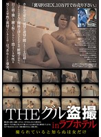 THEグル盗撮 inラブホテル 〜撮られていると知らぬは女だけ〜 ダウンロード