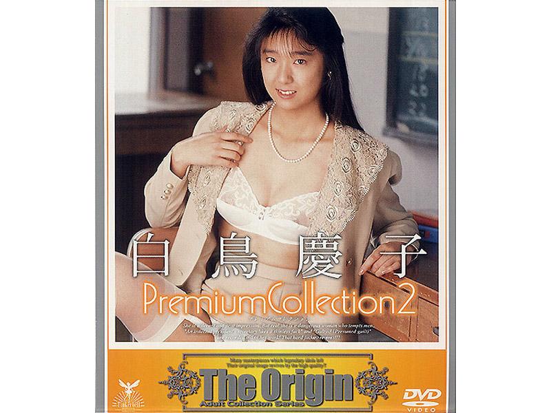 46tbd00046 Premium Collection 2 もっと激しく罰して下さい!! 白鳥慶子 [TBD-046のパッケージ画像